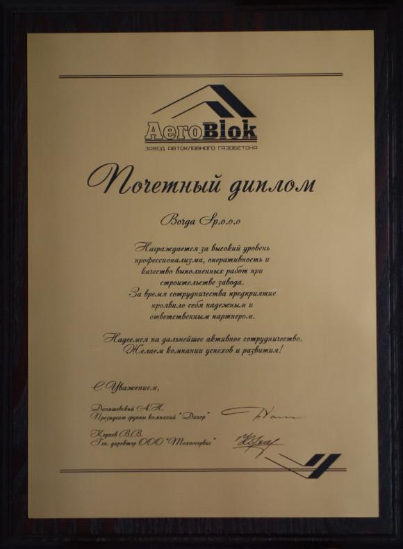 Диплом Borga